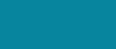 QBIS IVS – Tidsrapportering & projekthåndtering online